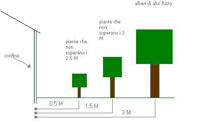 distanze alberi