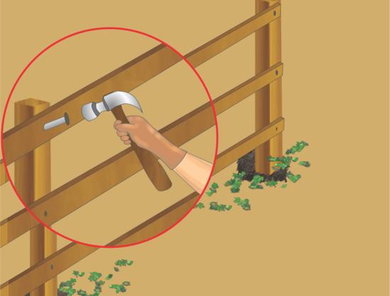 guida recinzione giardino