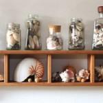 collezione barattoli