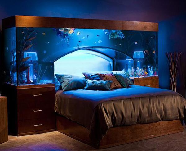 acquario letto