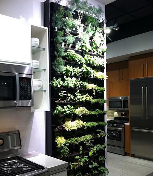 Un giardino di odori interno per la vostra cucina