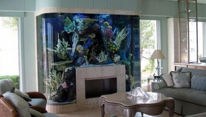 acquari spettacolari