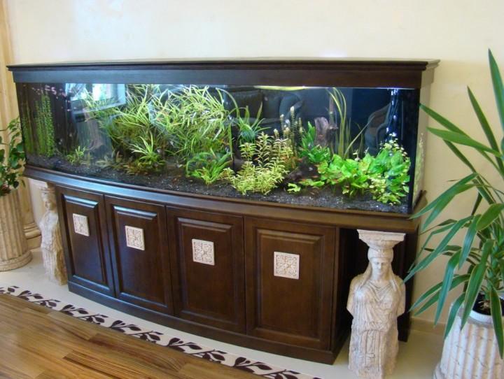 ufficio acquario