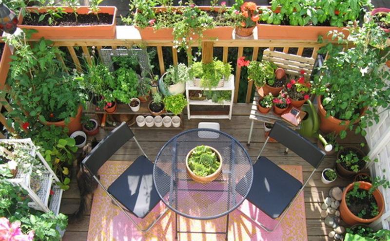 ortaggi e fiori sul balcone