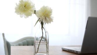 Fiori e piante: un tocco di colore per la casa
