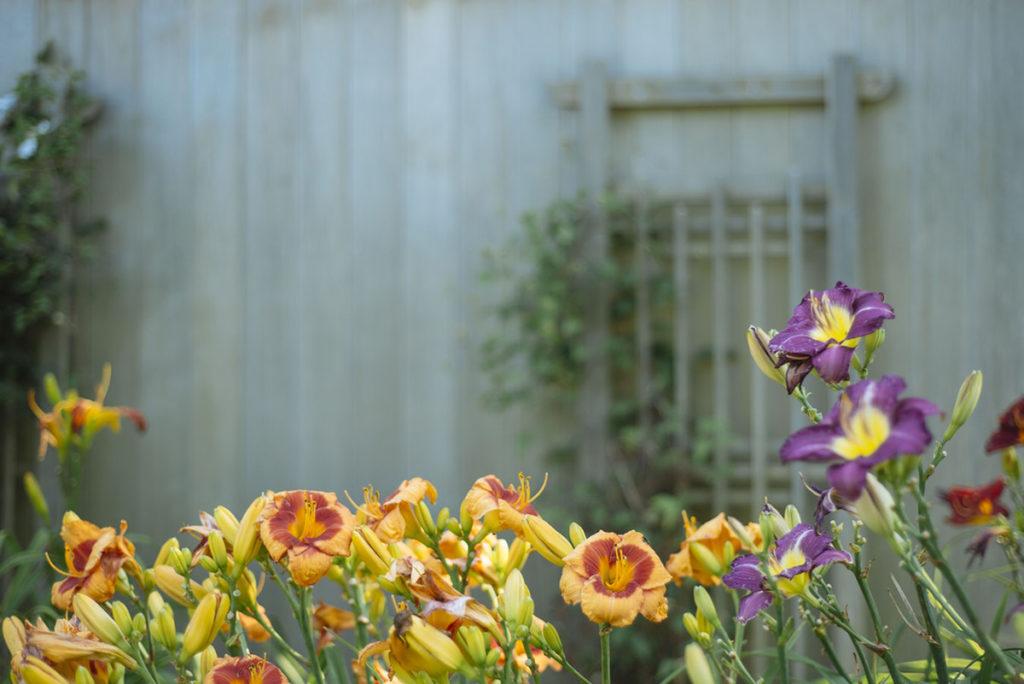 Realizzare con facilità i lavori in giardino