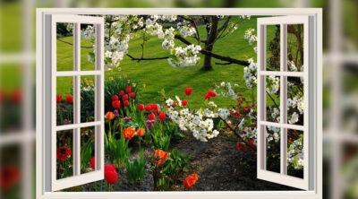 L'importanza della manutenzione di porte e finestre