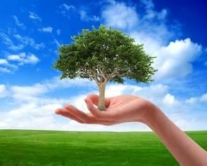 Marchio europeo Ecolabel
